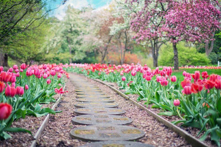 Frühlingsgruß senden