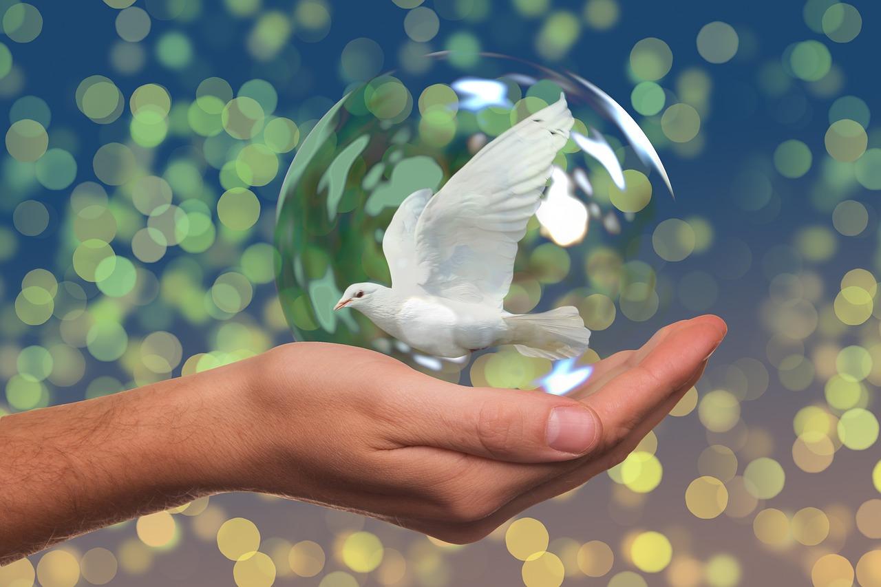 Versöhnungskarte kann Wunder bewirken